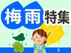 梅雨・傘特集