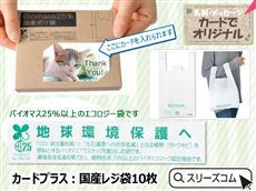 カードプラス:国産レジ袋10枚