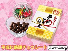 平成グッズ:チョコレートギフト