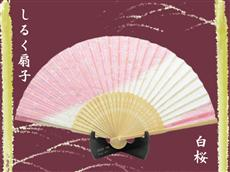 シルク扇子:白桜